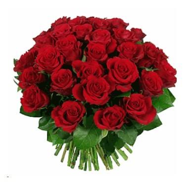 Bouquet de tres docenas de rosas