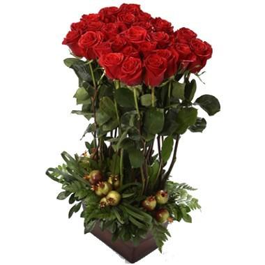 Alto de Rosas