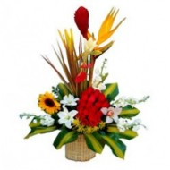 Canasta de 19 rosas con girasol. lirios y flores tropicales