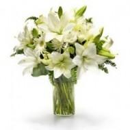 Lilies Blancos