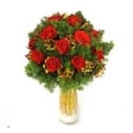 Navidad en rosas