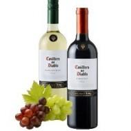Dos botellas de vino