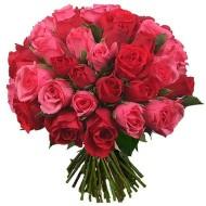 Bouquet de tres docenas de rosas rojas y rosadas