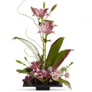 Topiario con orquídeas