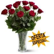 S�lo por esta semana �Doce rosas en florero!