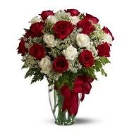 Veinte y cuatro rosas rojas y blancas en florero
